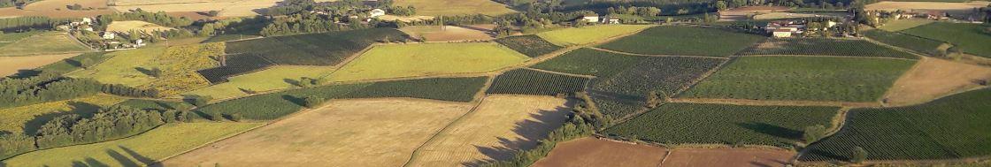 Agriculture de conservation chambre d 39 agriculture tarn - Chambre d agriculture 66 ...
